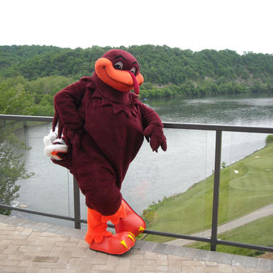 virginia tech hokie mascot standing over pete dye river course